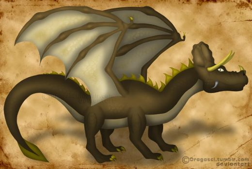 Triceratops Dragon by Dragasci