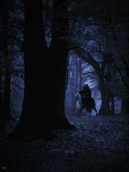 The Nazgul by Musicalpaintings