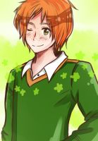 -request- I am Ireland by YellowBlure