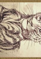 Tiger cub by OmegaLioness