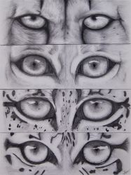 Feline eyes by a-Astree