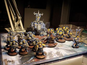 Space Wolves SWEDEN by TheFoundingFields