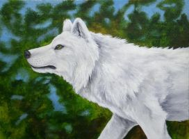 White Wolf by CreatTheCrow