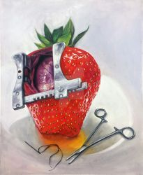 Heart surgery for a strawberry by carlosCL