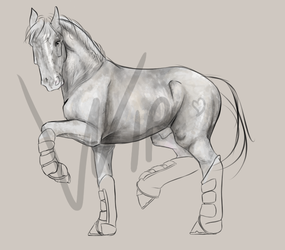 Mister Grey - WIP by Peatsouille