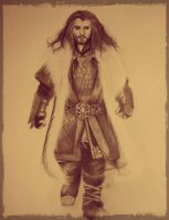 Thorin Oakenshield by SpanishSteps