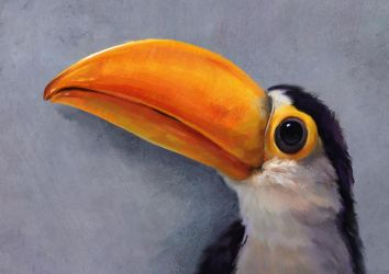 Baby Toucan by Aliena85