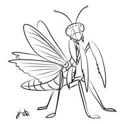 Praying Mantis Sketch by Kata