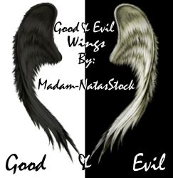 Good and Evil Wings by Madam-NatasStock
