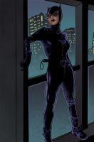 Catwoman Colors by arcarsenal