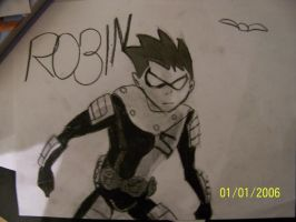 Robin by TinkChick14