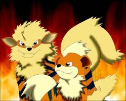 Arcanine and Growlithe