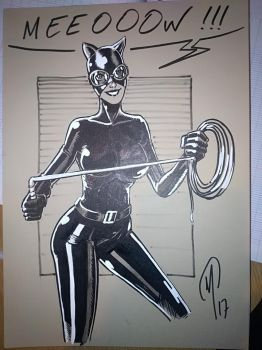 Catwoman commission by Madd-og