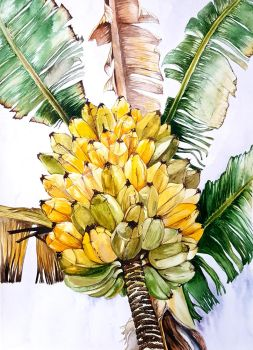 Bananas by jakhont