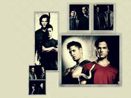 Supernatural Random Wallpaper by me969