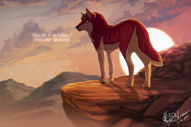 Live life to its fullest - memorial by Kairi292