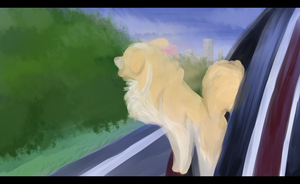 Going Home - Lacey's Exit by Wildfire-Tama