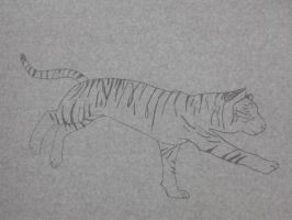 Running tiger by Sharon1997