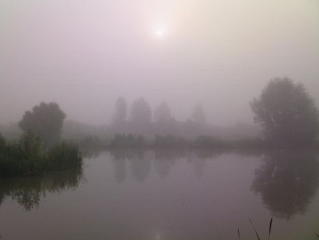 Early Morning mist by GrahamSym