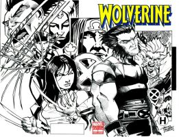 Wolverine sketch cover by KidNotorious