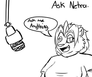 ASK NETRA by Tigerslam