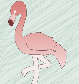 flamingo by sl0venia