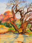 Utah desert tree watercolor by jupiterjenny