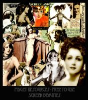 Screen Beauties - Digital Scrap Kit by FidgetResources