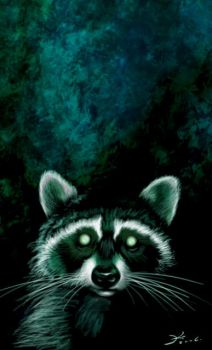 Scary racoon by ElsaKroese