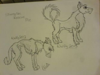 Rescued Collie Puppy Comparison by StarCrossedPsycho