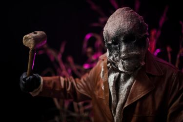 Scarecrow cosplay :) by miha9000
