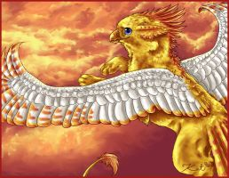 Gryphon of the Sun by kalicothekat