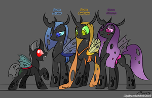 MLP: Meet the Queens of the Hives by SrMario
