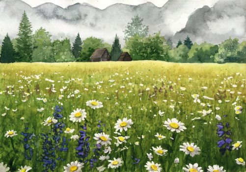 Meadow of daisies by JoaRosa