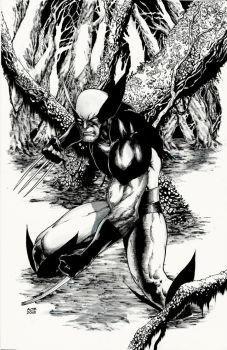 SVCC Wolverine Commission by Ace-Continuado