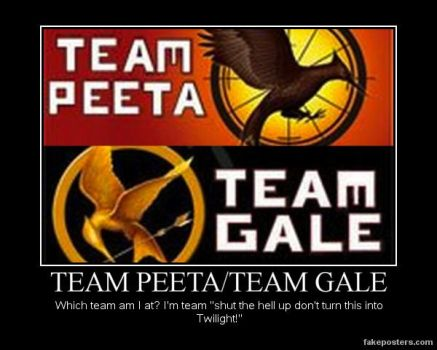 Hunger Games teams by IDK0091