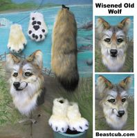 Wisened Old Wolf by LilleahWest