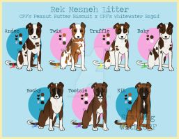 Rek Mesneh First Litter - CLOSED by prettypinkey2