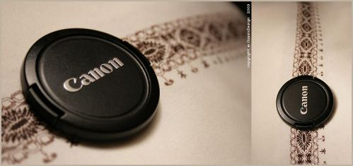 Canon .. Yes, you can by ClassicDesign