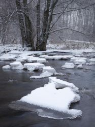 Chilly stream by Wodger
