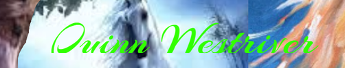 Banner by Firgrove-Stables