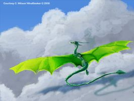 Flight of the Green Dragon by WindSeeker