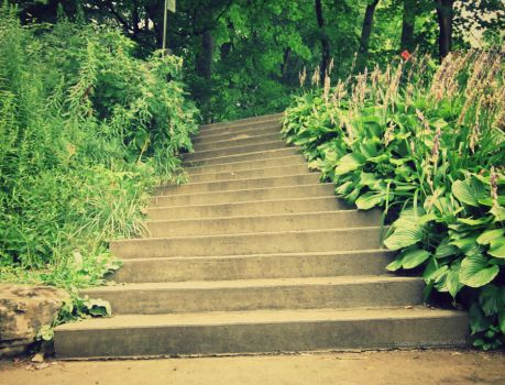 Stairs- Day 169 by TiiaBear