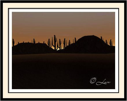 Desert Sunset by LaxmiJayaraj