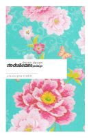 Scan Package 2 by shizoo-design