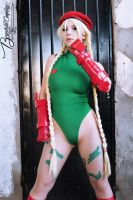 Cammy White by Brynhild-Undomiel