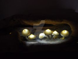Mushrooms 2 by Rathsi