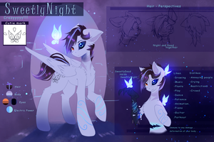 SweetlyNight Reference 2.0 by SweetlyNight