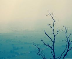 Alone at top by Auriferous-art