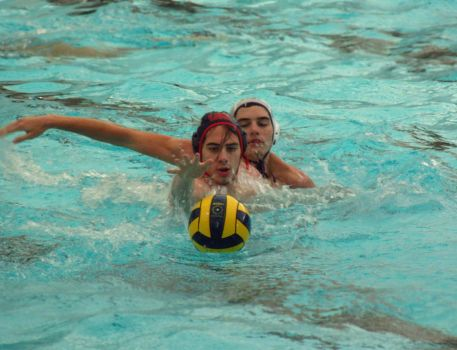 Waterpolo 002 by havocPigeons